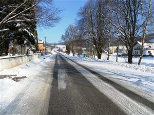 zima v januari 2011 023